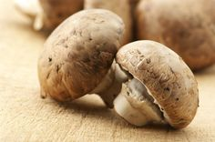 Grow your own mushrooms from the stalks of grocery store mushrooms.