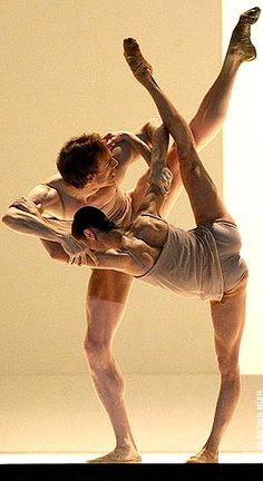 a+ballet+dancer's+body   dance.net -