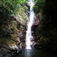 Waterfall before Kaikoura, New Zealand Waterfalls, New Zealand, Outdoor, Outdoors, Outdoor Games, The Great Outdoors, Falling Waters, Waterfall