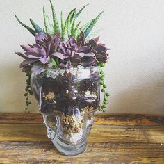 Skull planter via @arozona