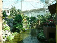 Gaylord Opryland. One of the many water features.  Loads of orchids everywhere.