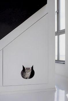 Ruimte voor de kat(tenbak) onder de trap!!