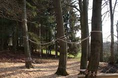 Image result for using ropes in a playground