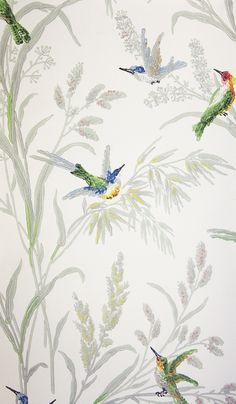 Augustine Wallpaper A printed wallpaper on a light cream background featuring colourful birds amongst grey/green wildflowers and plants.