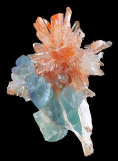 mineralists:Amazing combination of Orange Creedite and Blue-Green Fluorite crystals