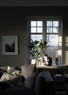 My livingroom in the sunset | Photo: Daniella Witte