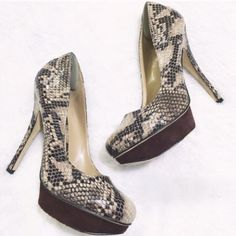 ✨ Aldo Snakeskin Pumps ✨ I love a great thing in life. These are that thing hehe! Absolutely stunning. Worn a couple of times. Excellent condition! Enjoy! ALDO Shoes Heels