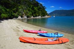 Karamarina Bay, Kenepuru Sound, Marlborough = secluded sunny beach front property with drive on access - Kenepuru Sound Bach for rent Sunny Beach, Holiday Accommodation, Dinghy, Canoe, Kayaking, Surfboard, Sunnies, Places To Go, Swimming