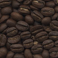 Coffee Plant » We roast Organic and Fairtrade Coffee for Wholesale and Retail at 180 Portobello Road, London W11 2EB
