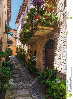 Italian Street, Tuscany, Stairs, Layout, Italy, Green, Life, Beautiful, Color