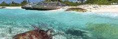 Playa del Carmen Compra Venta