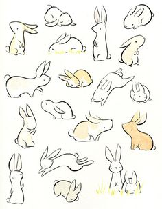 drawings of babies Cute Animal Drawings, Animal Sketches, Cartoon Drawings, Cute Drawings, Bunny Sketches, Bunny Tattoos, Rabbit Tattoos, Bunny Art, Cute Bunny