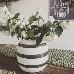 Kähler m doftande jasmin #kähler#kählervas#blomma#blumen#blommor#cvece#flowers#jasmin#jasmine#jasminflower#vas#kitchentable#köksbord#tisdag#tuesday#dienstag#utorak http://misstagram.com/ipost/1551687714524823013/?code=BWIs8FSlv3l