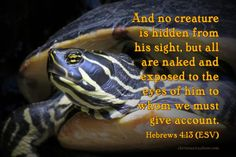 Verse of the Day: Nothing Is Hidden from God - Hebrews 4:13