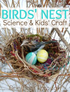 Instructions to make this beautiful birds' nest craft with your kids. Easy enough for a toddler! Perfect for displaying Easter Eggs, or for a science unit on birds. {One Time Through} #kidscrafts