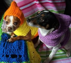 Crocheted Hooded Dog Sweater Pattern PDF Small and Medium Sizes. via Etsy.: