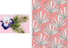 Tropical_surfacedesign