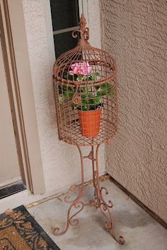 SPRING! Pink geranium for my bird cage on the front porch.