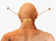 Stimulating those points to help headach and neck pain.  Location: Below the base of the skull, in the hollow between the two large vertical neck muscles, two to three inches apart depending on the size of the head.  Benefits: Relieves arthritis in the shoulders and neck, headaches, and stiff neck.     Find tools to help you to massage:http://www.amazon.com/Handheld-Tissue-Massager-Infrared-Light/dp/B00DH0N7VE/ref=sr_sp-btf_image_1_10?s=hpc&ie=UTF8&qid=1380218968&sr=1-10
