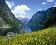 FrithjofFure Fjord Norway