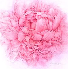 To paint a peony