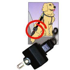 Automatik-Hundegurt Gurtrolle Click'N Roll