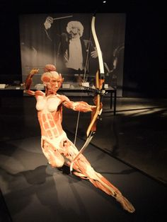 The Archer, showcasing the strain on muscles in intense activity