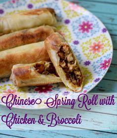 Chinese Chicken spring roll