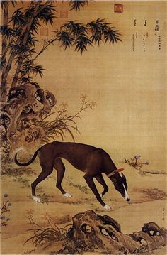 qing dynasty Chinese Greyhound Art #1 … heaveninawildflower: Picture of Moyuli (墨玉璃), a Chinese greyhound, from Ten Prized Dogs Album. Qing Dynasty. http://ishare.iask.sina.com.cn/f/14384534.html?utm_content=buffer7ee25&utm_medium=social&utm_source=pinterest.com&utm_campaign=buffer. Giuseppe Castiglione (1688–1766) Wikimedia.: qing dynasty Chinese Greyhound Art #1 … heaveninawildflower: Picture of Moyuli (墨玉璃), a Chinese greyhound, from Ten Prized Dogs Album. Qing Dynasty.