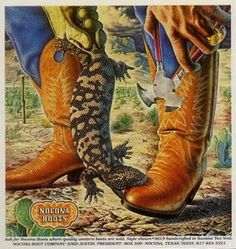 Vintage Nocona Boots Poster Gila Monster by honeyblossomstudio Cowboy Art, Cowboy And Cowgirl, Cowboy Boots, Western Boots, Man Boots, Cowgirl Style, Vintage Advertisements, Vintage Ads, Vintage Posters