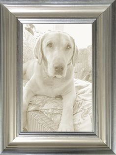 Soft Silver Transitional Picture Frame —made in USA by  M U S E U M F A C S I M I L E S