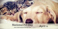 NATIONAL PET DAY – April 11