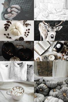 a monochrome autumn aesthetic