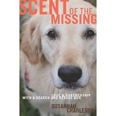 .Search and rescue dog