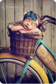 i usually don't like these posed baby photos, but i DO like the baby in the bike basket