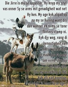 Good Morning Rainy Day, Good Morning Prayer, Good Morning Quotes, Prayer Verses, Prayer Quotes, Bible Verses Quotes, Gods Princess, Afrikaanse Quotes, Goeie More
