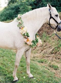 10 Dreamy Ideas For An Enchanted Woodland Wedding | Bajan Wed