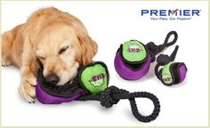 Rip'n'Tug™ toys are stimulating, reward-based toys that satisfy your pup's hunting instinct and keep him busy for hours when stuffed with tasty treats or kibble! These toys are lined with fabric fastener so they can be ripped in two and used as a tug toy, plus they can be filled with treats as a reward. Choose from the Rip'n'Tug™ Ball (available in small, medium, or large), Hammerhead Shark, or Octopus (available in small or medium/large). $13