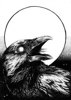 Crow Art, Raven Art, Bird Art, Crow Illustration, Illustrations, Corvo Tattoo, Art Sinistre, Crows Drawing, Tatoo Bird