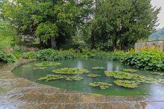 dan pearson landscape design / old rectory gardens, naunton gloucestershire Love Garden, Water Garden, Landscape Design, Garden Design, Dan Pearson, Nature View, Formal Gardens, All Plants, Water Features