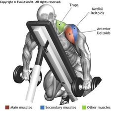 SHOULDERS - DUMBBELL LYING FRONT RAISE