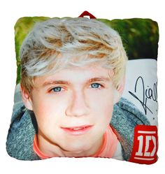 One Direction Niall Pillow