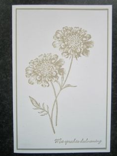 Stampin Jacqueline: Field flowers