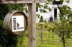 Miranda Vineyards - Goshen, CT @ctwinetrail1