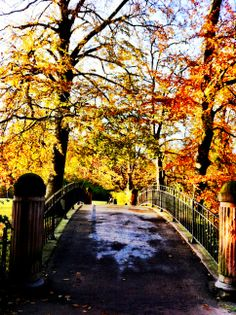 Fall in Frederiksberg Have  #frederiksberghave #fall