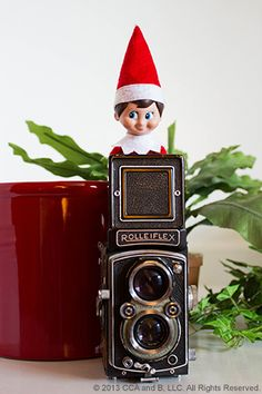 Elf-otographer - set up with camera on tripod