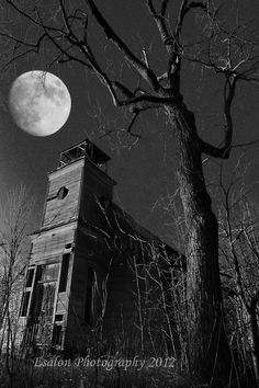 Old abandoned church under a spooky tree in by EsalonPhotography, $25.00