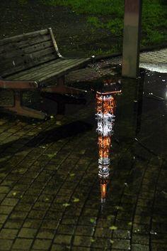 s-hsmt:    notrebound:    jam343:    konomon:    jacony:    itokonnyaku:    yotta1000:    choccoto:    nemoi:    thinkupstudio:    handa:    picapixels:  My Favorite Point (Only after the rain) (via OiMax)