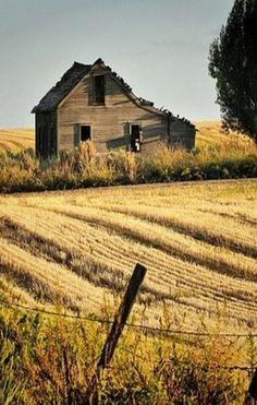 Forgotten Old Farm House - Writing inspiration #nanowrimo #scenes #settings