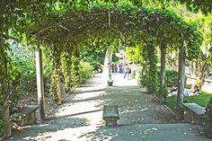 le jardin de Montmarte